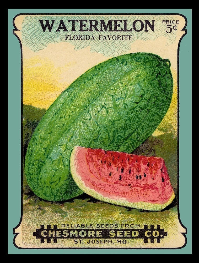 Florida Watermelon Seed Pack Refrigerator Magnet