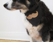 Curly Moustaches Are Not Just for Poodles reversible embroidered dog bandana, size MEDIUM