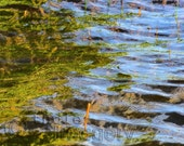 Abstract Water Composition 4, 8x10 digitally altered fine art photograph