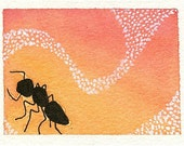 Orange Carpenter Ant - Original Watercolor Nature ACEO