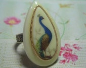 Peacock Ring with Vintage and Rare Cabochon Lucite West Germany Tear Drop Shape Bird of Paradise Ring on Adjustable Brass Band