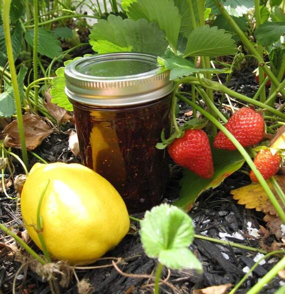 Strawberry Lemonade Preserves 8 oz Jar Organic Jam
