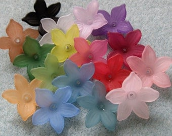 Frosted Lucite  Acrylic Flower Cap Bead Mix  20mm 415