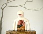 Anatomical Mook