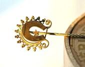 victorian horseshoe hat pin