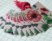 12 gift Tags Square Pink Floral Design Free Shipping