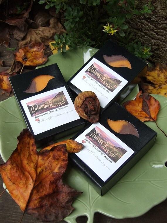 AUTUMN HARVEST Handmade Soap Bar (Limited Edition)
