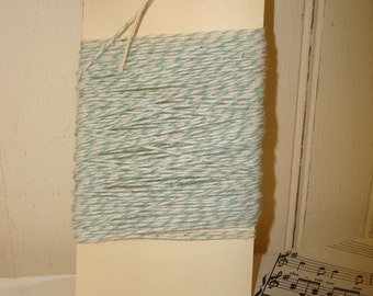 Mint Green and White Bakers Twine - 20 Yards