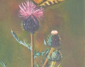 Butterfly with Thistle    Wildflower Painting