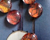 African Print I Glass Magnets