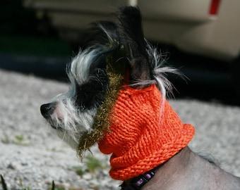 Punkin Head Puppy Cowl