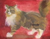 Brown Persian on a Red Wall - photo greeting card CA-005