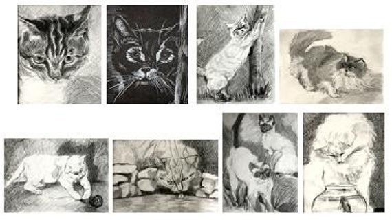 Chris's Charcoal Cats