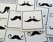 Movember MUSTACHE MADNESS mini note card set - 15 cards & envelopes