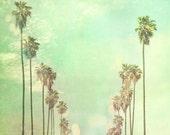 Palm trees photograph, summer decor, Los Angeles California, La La Land, sunny vacation mint green nursery art photography large 40x40 print