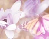 "butterfly photograph ""last night i dreamt i had wings"". ethereal pink orange purple lavendar romantic spring babys nursey little girls room"
