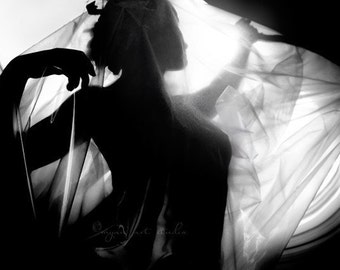 surreal photograph, the Alchemist, mysterious dark moody haunting noir transmutation feminine translucent cloth, romantic photography