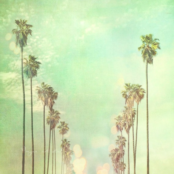Palm trees photograph, summer decor, Los Angeles California, La La Land, sunny vacation mint green nursery art photography large 40x40 print