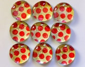 Glass Marble Magnets - Marley Red Polka Dot (FREE SHIP)