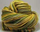 RESERVED FOR STEFFFANSHEN Citrus Groves Hand-Dyed Merino Wool and Silk Fingering (Sock) Weight Yarn