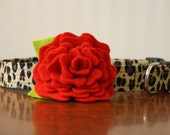 Flower Dog Collar - Leopard Lady