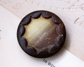 Vintage ombre brown celluloid in metal button X 1