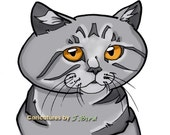 8x10 Exotic Shorthair cat caricature print by J.Bird color and markings are customizable read listing for more info