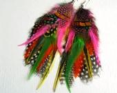 SALE Feather Earrings. All Neon Like