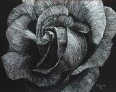 Rose Scratch Art