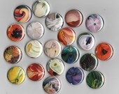 Georgia O'Keeffe Set of 6 assorted 1 inch buttons