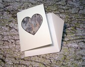 sycamore -  blank greeting card by Sarah Knight, nature in my heart valentine