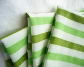 vintage retro green striped pillowcase