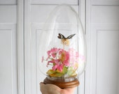 Vintage Display Egg Dome with Butterfly and Flowers