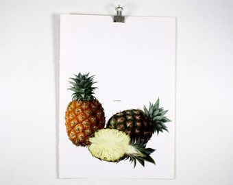 Vintage Print - Pineapple  - Book Plate - 1965 - Vintage Print - Book Plate  - 1965 - Unframed Art Bookplate - Gallery Wall - Botanical Art