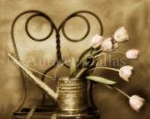 Tulip Photograph Flower Photograph Sepia Photograph Still Life Photograph Cottage Style Cottage Chic