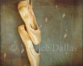 Ballet Shoes Fine Art Photograph