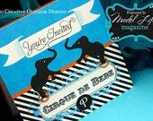 Cirque de Bebe Baby French Circus Shower Invite