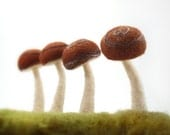 Felted Spiral Mushrooms in Brown  - Set of Four Made To Order