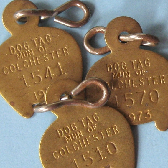 2 Vintage 1973 Brass Dog Tag Tags Rabies Vaccinated Brass Dog Tag 1973 Number Tag Numbered Tag