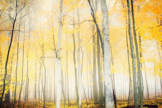 Autumn landscape photography art print -  Yellow fall foliage rustic harvest large print free shipping
