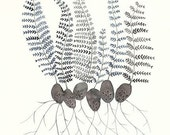 Fern Sprouts II original watercolor painting