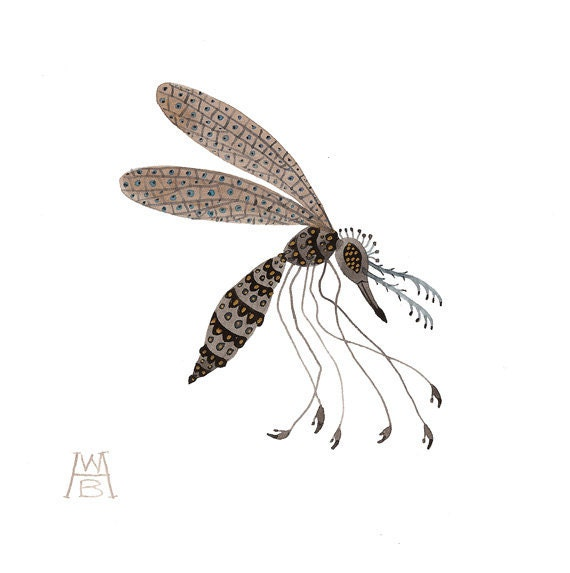 Spangled Mosquito insect specimen original watercolor painting