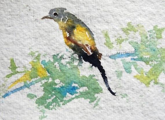 original watercolor painting ACEO yellow  bird