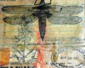 5 x7 OOAK Beeswax Encaustic Collage-Matted, Ready to Frame-DragonFly- Original
