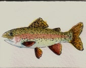 ACEO WATERCOLOR PAINTING  RAINBOW TROUT ORIGINAL ART