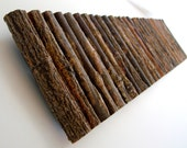 Rustic Wall Art -- Study in Willow