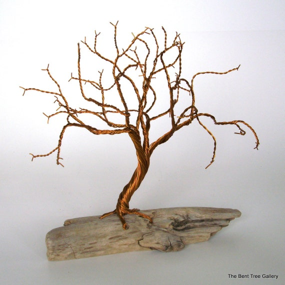 Twisted Wire Tree with Driftwood Base
