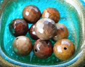 Petrified Wood Jasper, Faceted Rounds, 12mm, 8ea