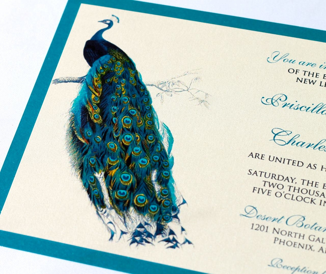 Priscilla Peacock Wedding Invitation Sample Ivory Ecru