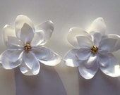 Big White Lily flower